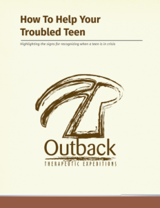Troubled Teen Whitepaper