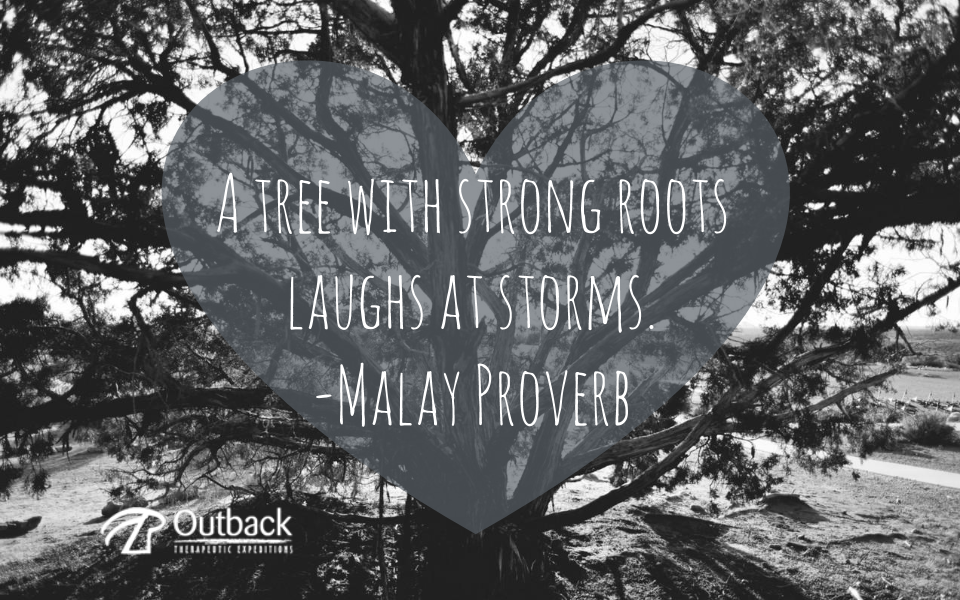 A tree with strong roots laughs at storms