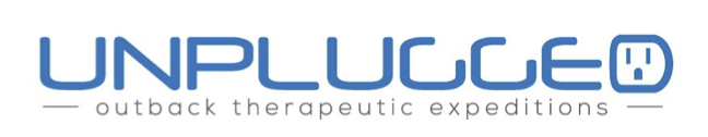 Unplugged electronic addiction therapy logo