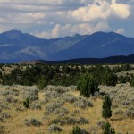 Wilderness therapy setting of sagebrush, juniper trees, mountains and open blue sky