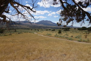 Trail through wilderness at Outback Therapeutic Expeditions